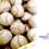WEDGE Infinity『赤坂英一の野球丸』169